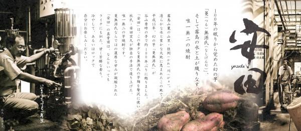 安田 パンフ02